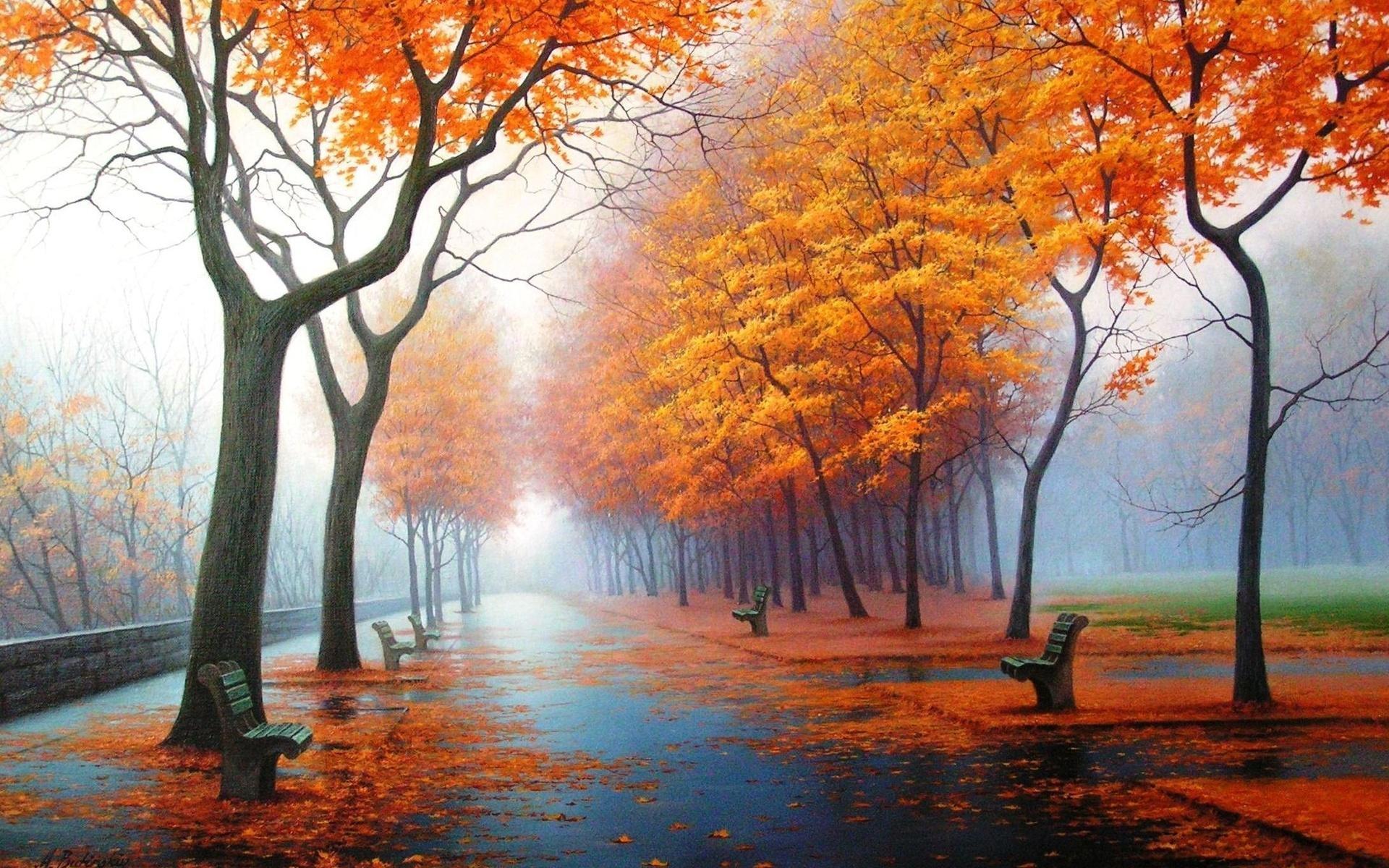 Осенний парк картинки на рабочий стол008