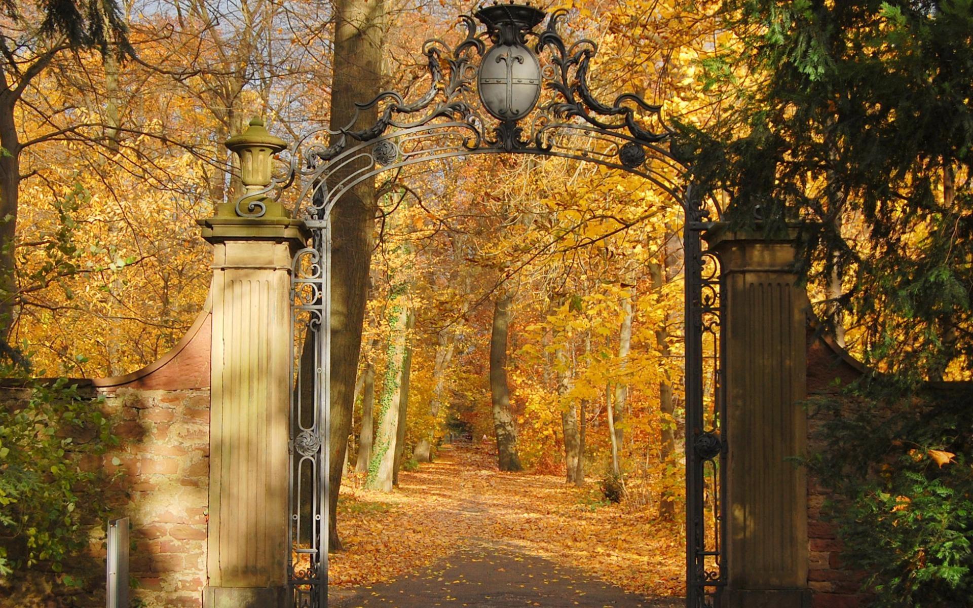 Осенний парк картинки на рабочий стол011