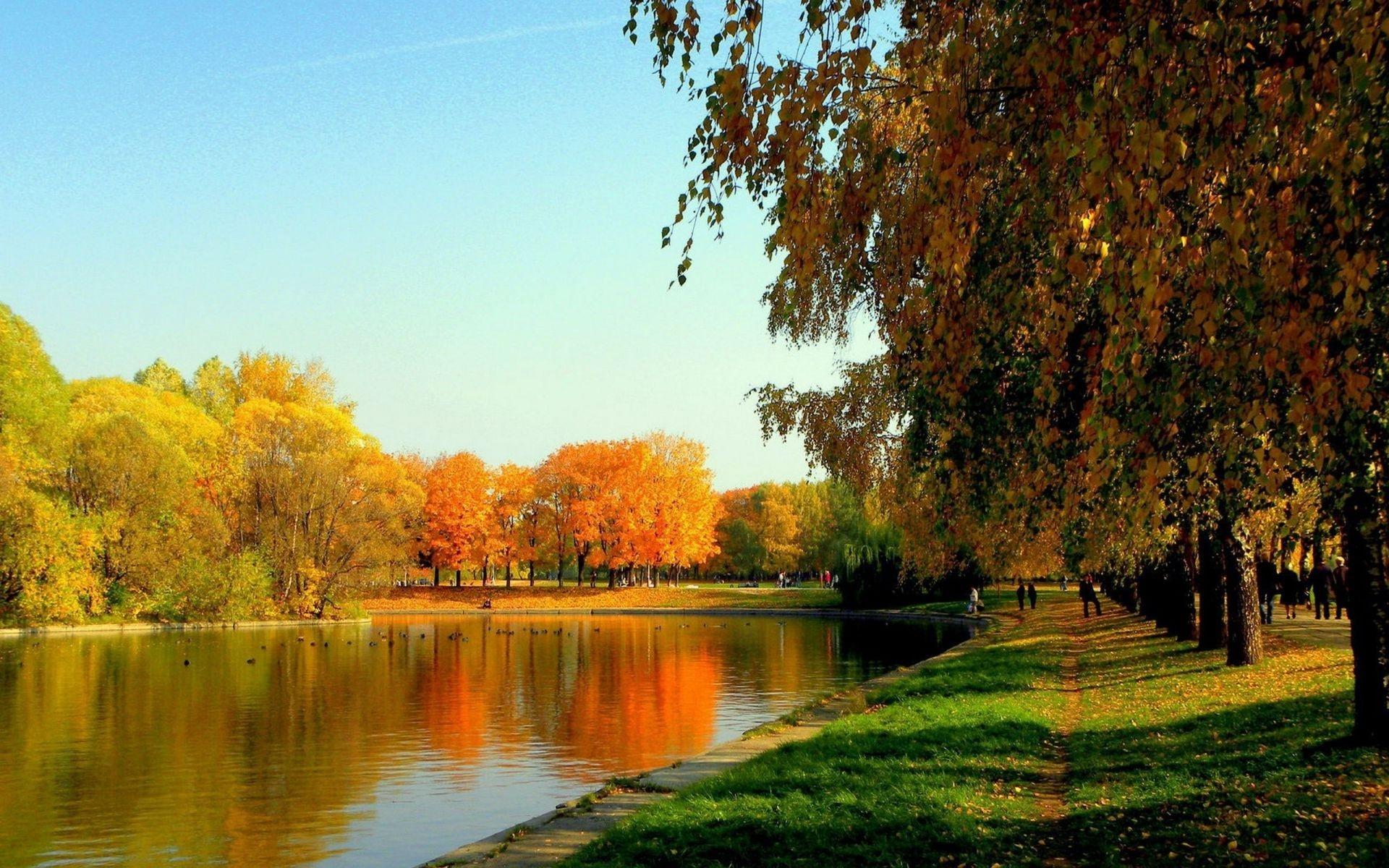 Осень в парке обои для рабочего стола004