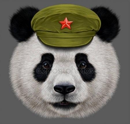 Панда скачать фото006
