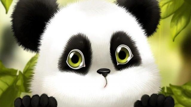 Панда скачать фото016