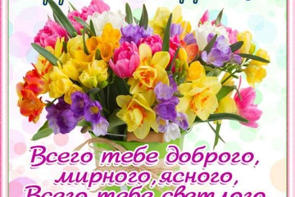 Поздравления с днем рождения с ромашками картинки   очень красивые006
