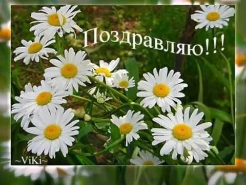 Поздравления с днем рождения с ромашками картинки   очень красивые007