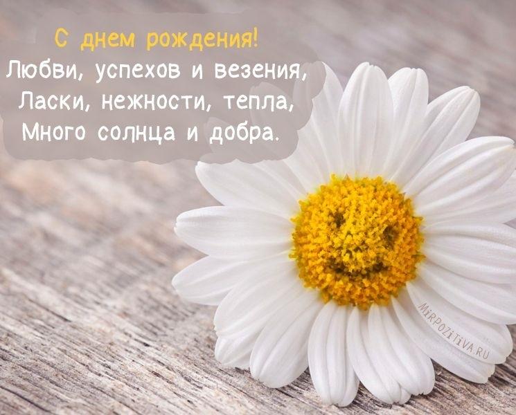 Поздравления с днем рождения с ромашками картинки   очень красивые013