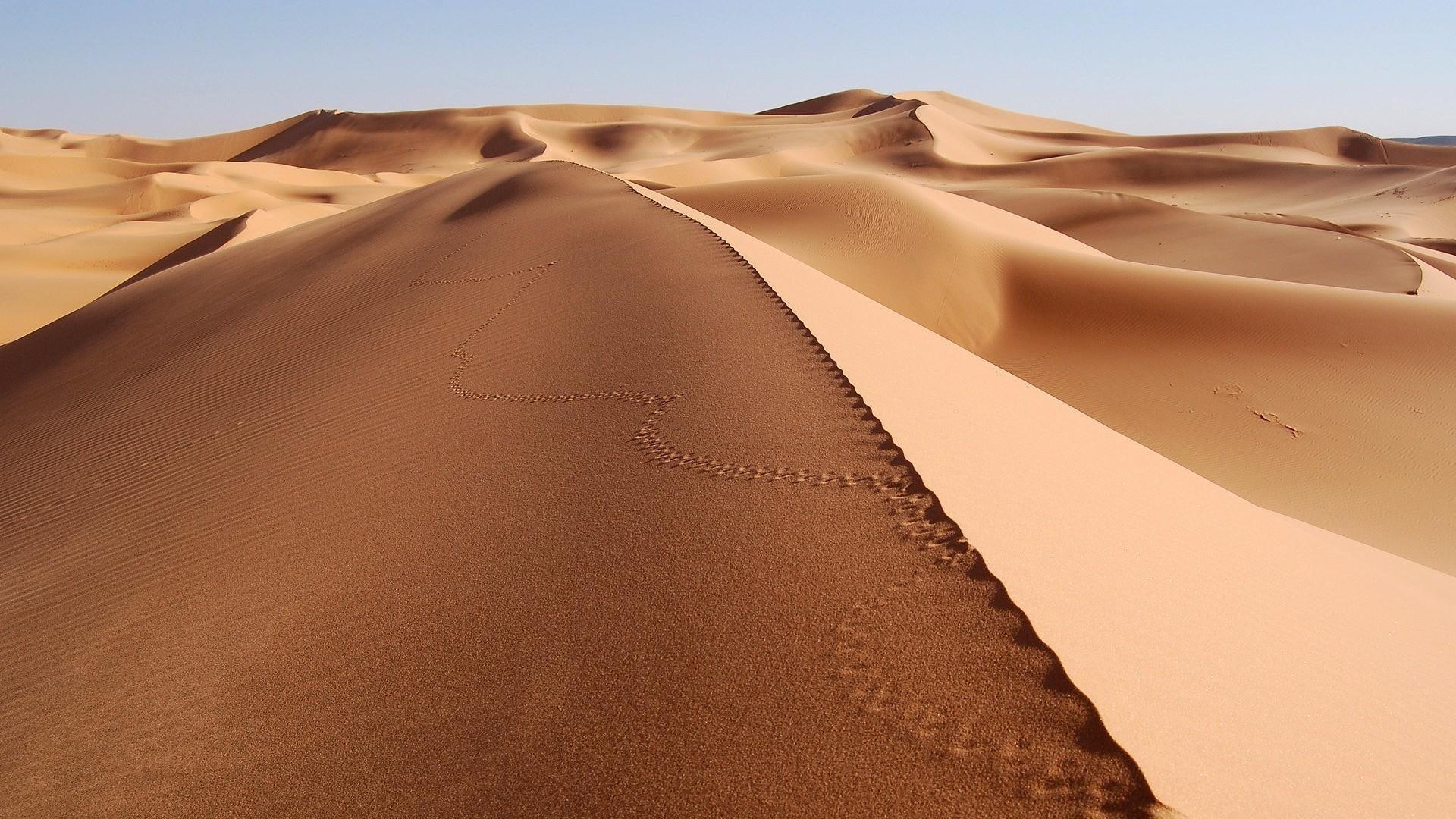 Пустыня красивые картинки на рабочий стол019