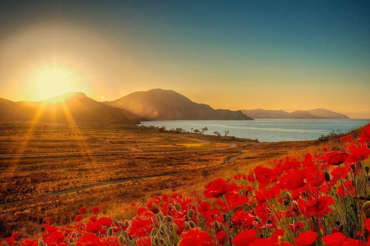 самая красивая открытка солнце спицы