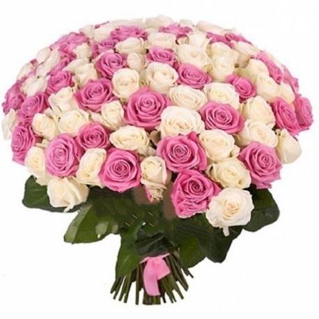 Розы розовые и белые фото   изображения002