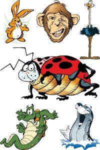 Скачать картинки насекомые   красивая подборка005