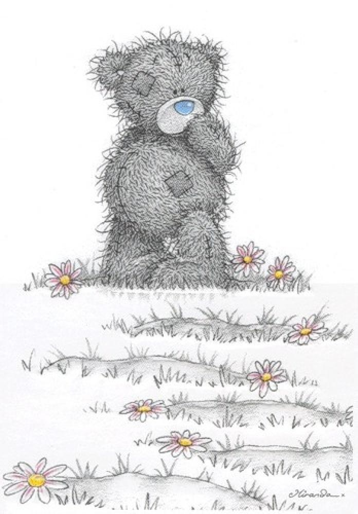 Картинки, картинки смешные мишки тедди