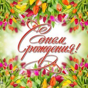 Тюльпаны фото с днем рождения   открытки020