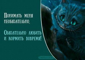 Алиса в стране чудес картинки кот013