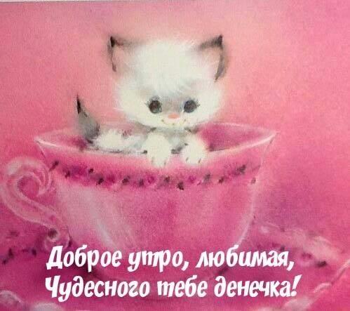 Доброе утро любимая моя девочка открытки033