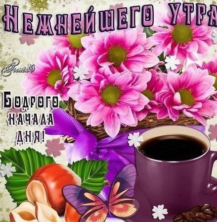 Доброе утро любимая самые красивые открытки011