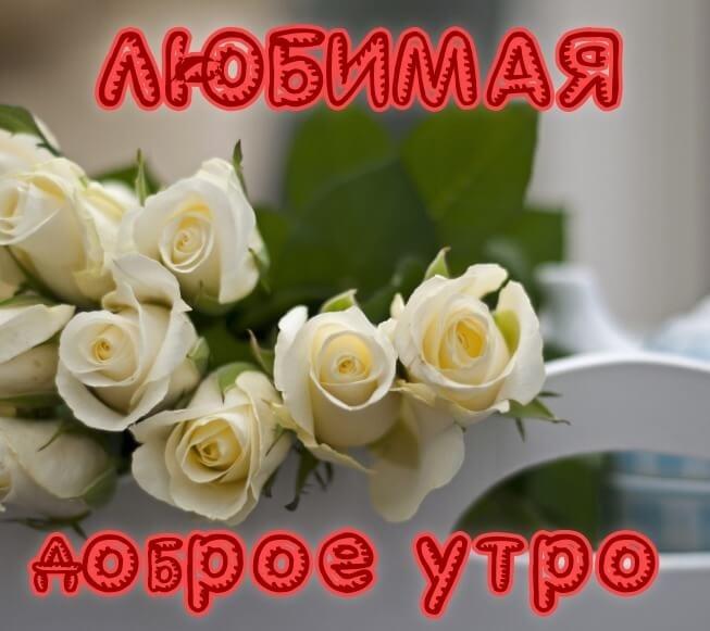 Доброе утро любимая самые красивые открытки015