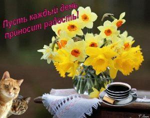Доброе утро приносит добрый день открытки008