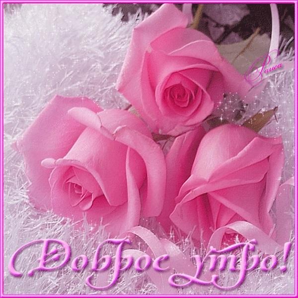 Доброе утро с цветами для женщины003