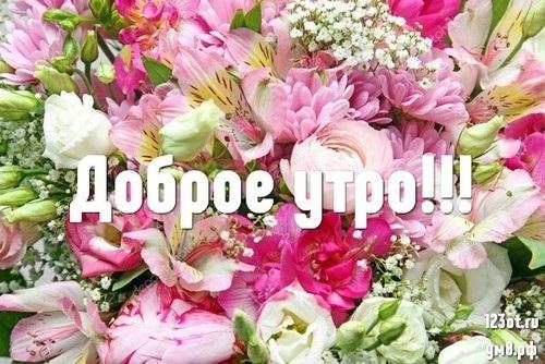 Доброе утро с цветами для женщины011