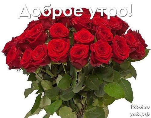 Доброе утро с цветами для женщины013