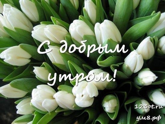 Доброе утро с цветами для женщины014