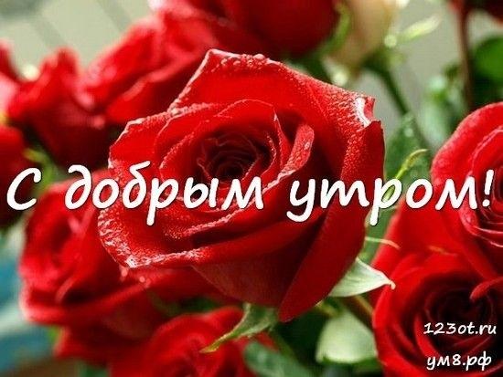 Доброе утро с цветами для женщины015