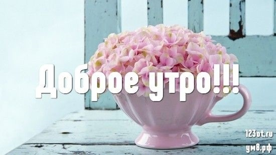 Доброе утро с цветами для женщины020