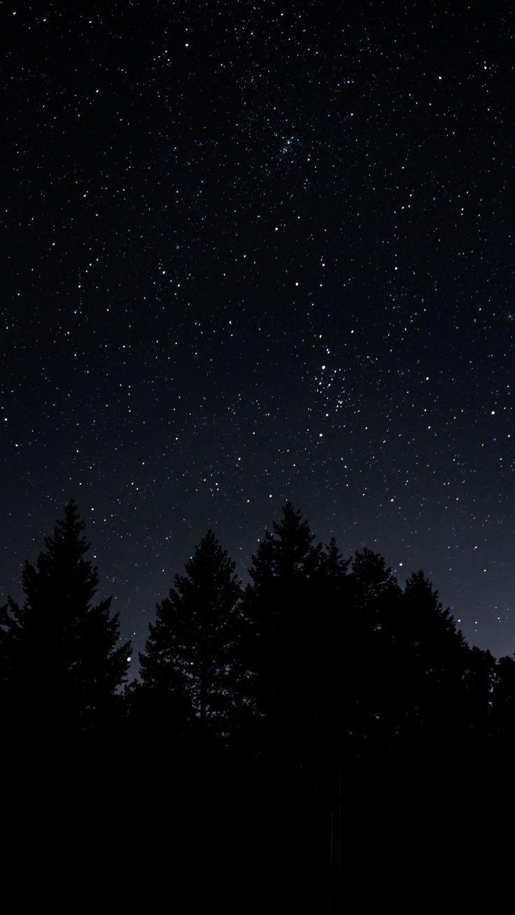 Звездное небо обои на айфон   скачать бесплатно (1)