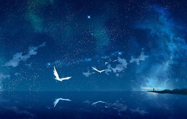 Звездное небо обои на айфон   скачать бесплатно (17)