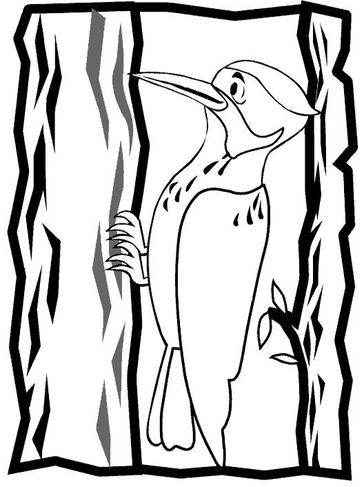 Картинка для детей дятел на дереве 008