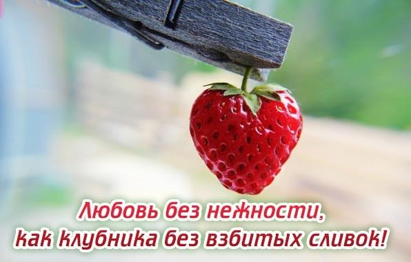Картинки любовь и нежность с надписям 010