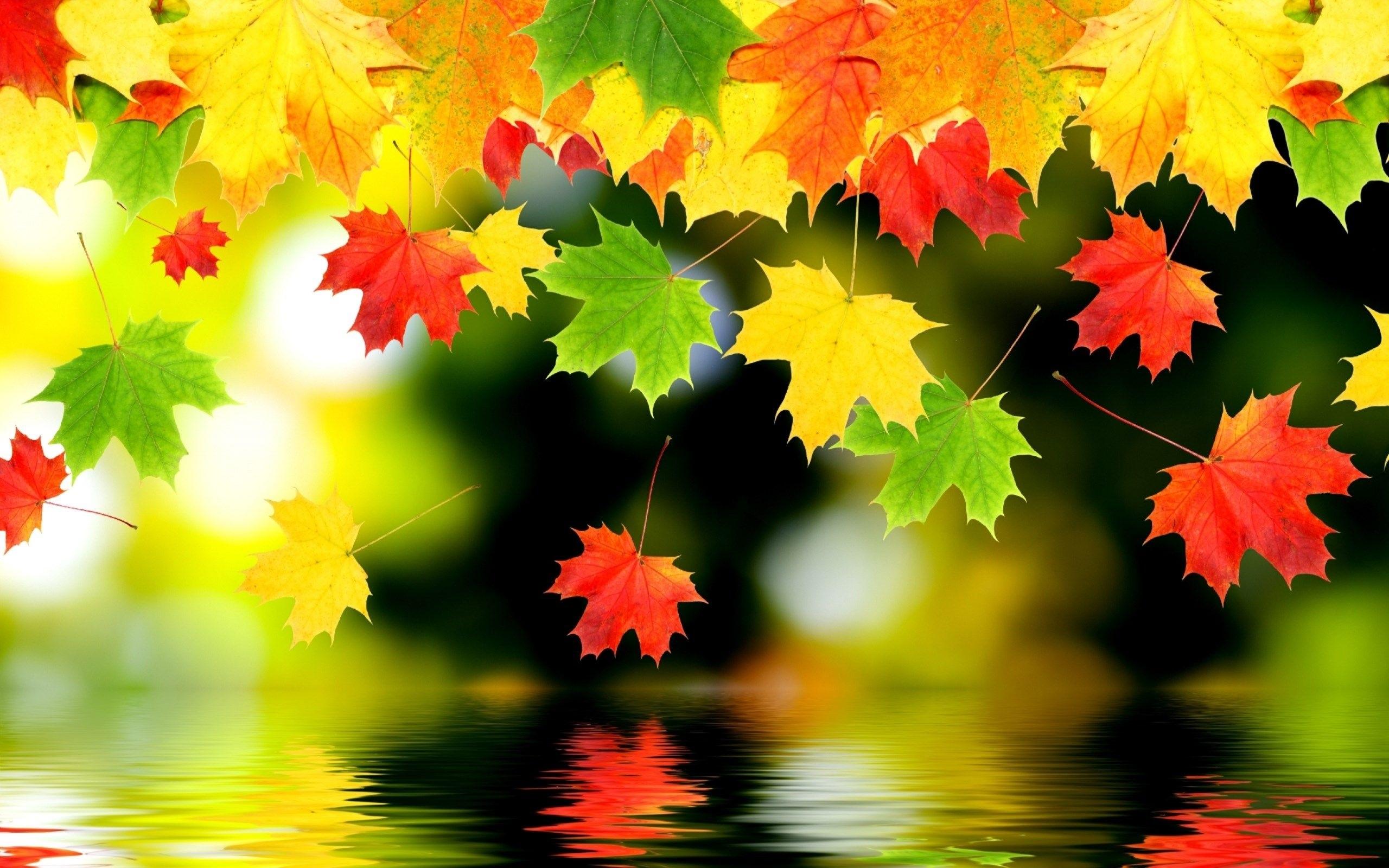 Картинки про осень на рабочий стол 004
