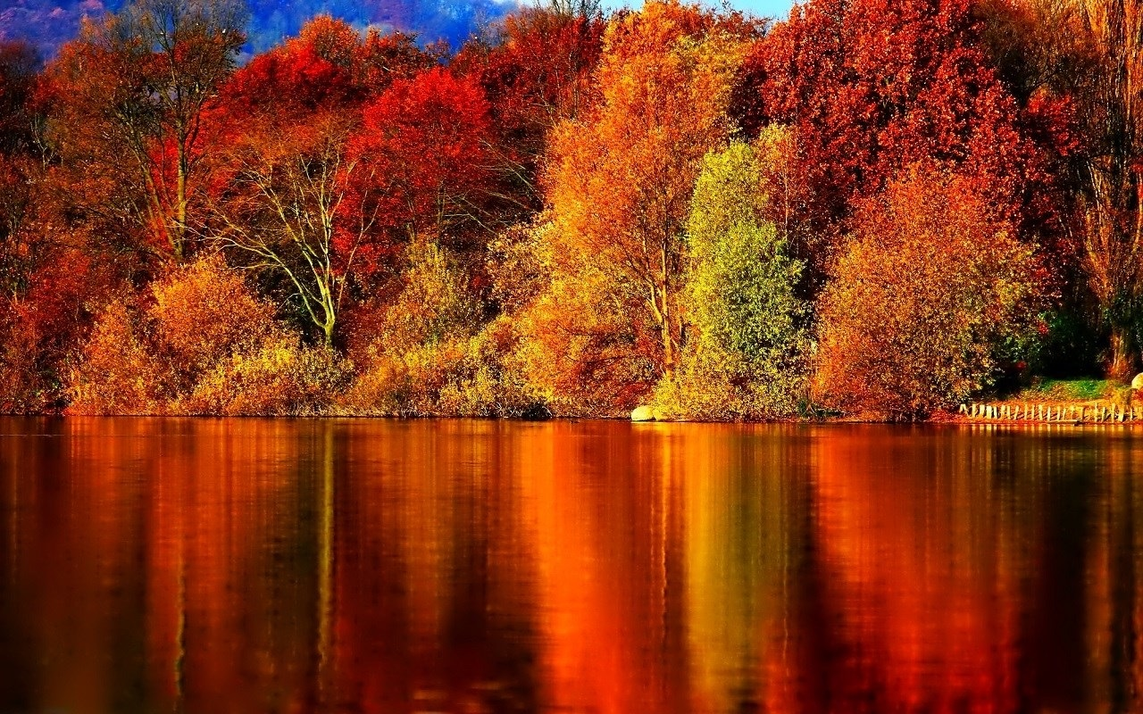 Картинки про осень на рабочий стол 010