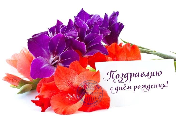 Цветы открытки для мужчин с днем рождения