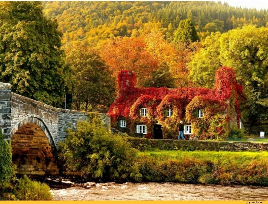 Красивые картинки осень в городе 014