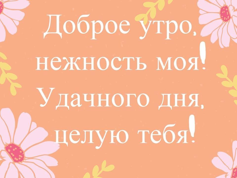 Открытка доброе утро и хорошего дня целую006