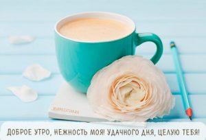 Открытка доброе утро и хорошего дня целую008