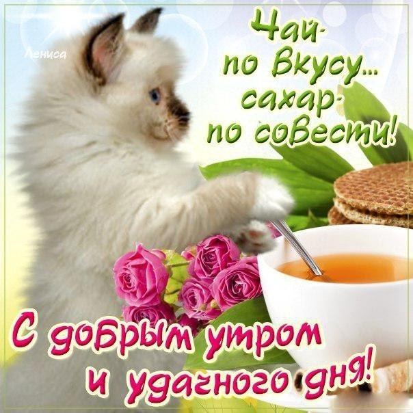 Открытки доброе утро и счастливого дня012