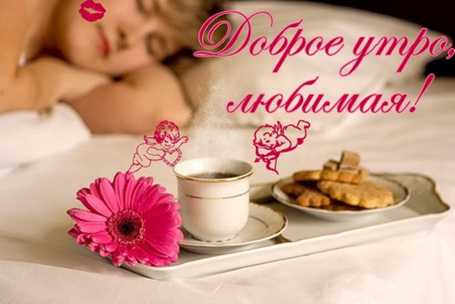 Открытки доброе утро для любимой женщины, зайчиков