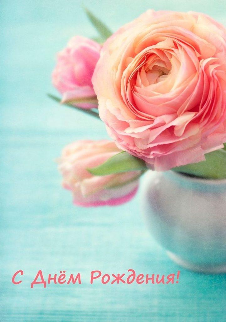 Картинки, нежные цветы картинки с днем рождения девушке