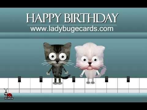 Поздравления с днем рождения открытки кошки023