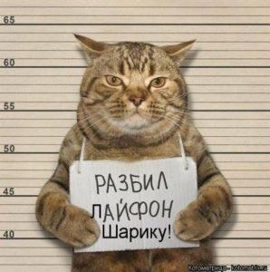Прикольные картинки с названиями животных для детей 018