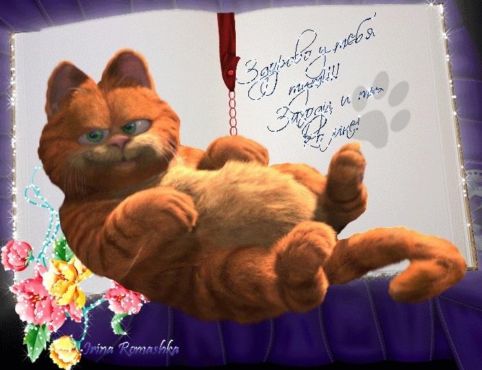 Рыжий кот открытка с днем рождения001