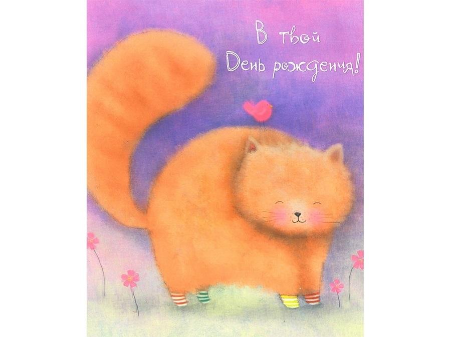 Рыжий кот открытка с днем рождения007