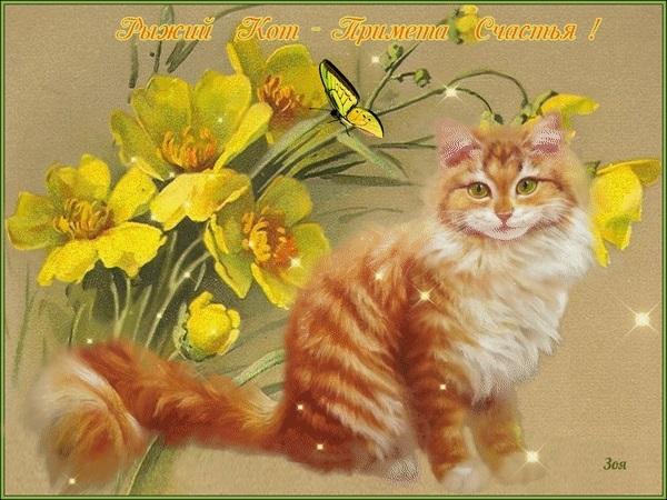 Рыжий кот открытка с днем рождения009