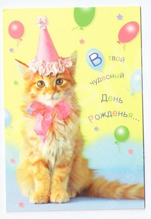 Рыжий кот открытка с днем рождения015