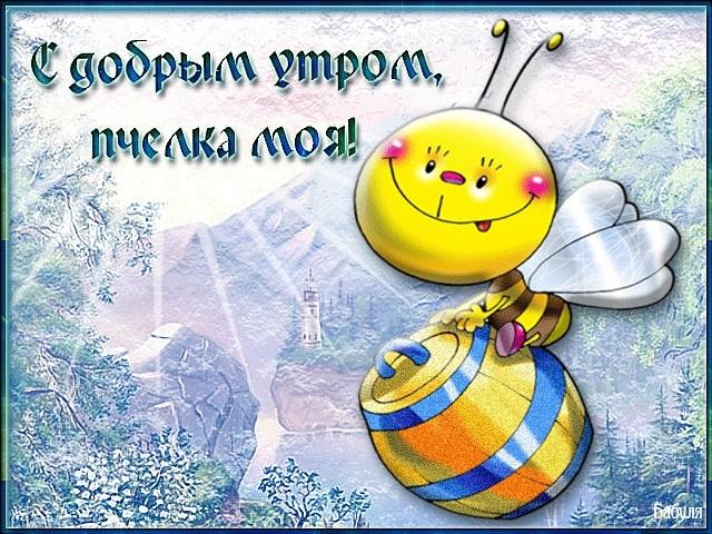 Скачать открытки доброе утро приколы001