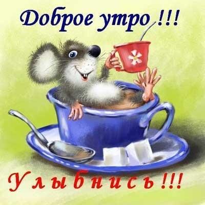 Скачать открытки доброе утро приколы032