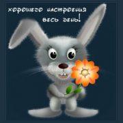 Смешная открытка доброе утро хорошего дня033