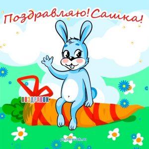 Смешные картинки с днем рождения Александр 013