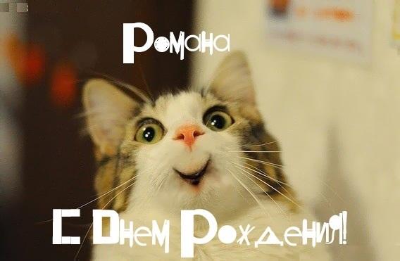 Смешные картинки с днем рождения Роман 020