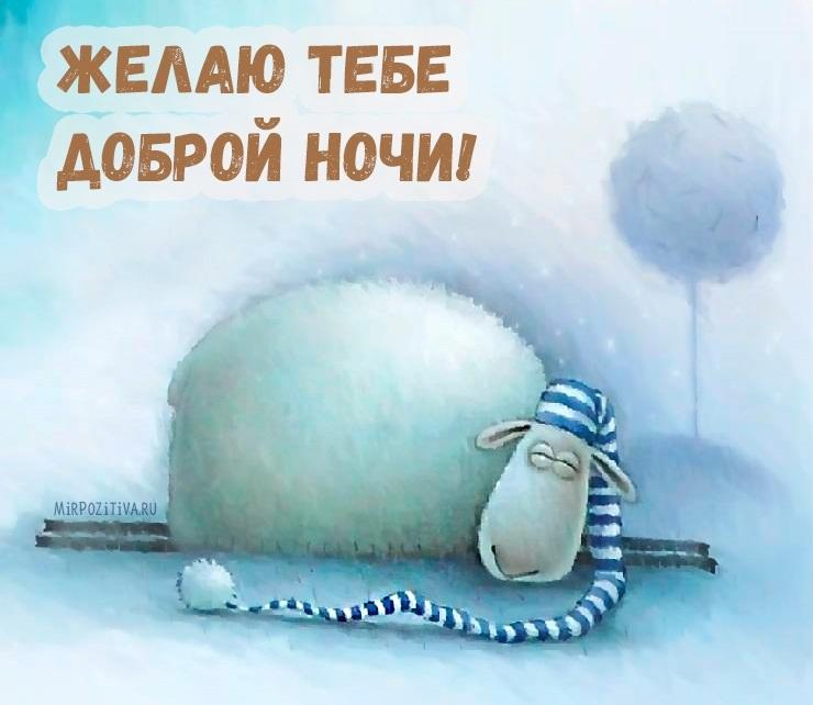 Картинки спокойной ночи красивые с юмором, мороз картинки